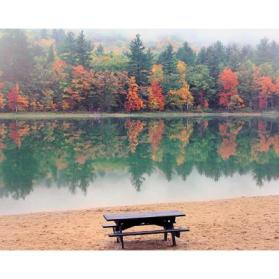 Lake with Bench