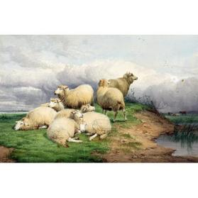 Sheep on a Hillock