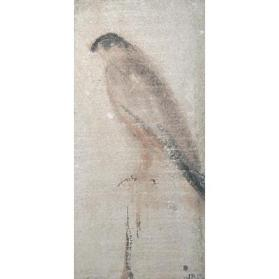 Buddhi Tablet: Peregrine
