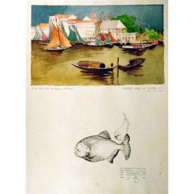 Colored Sails in Belem/The Meanest Fish in the World - The Piranhas of the Amazon
