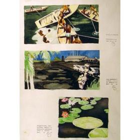 Divers in Antigua, Trinidad/The Asphalt Lake - La Brea/Waterlilies and Victoria Regia Botanical Garden, Port of Spain