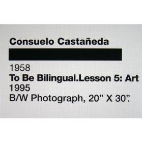 To Be Bilingual, Lesson 5: Art